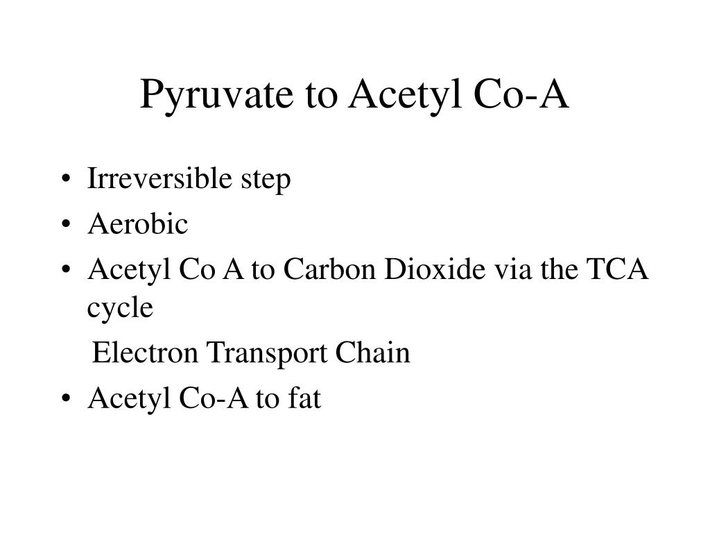 Pyruvate to Acetyl Co-A