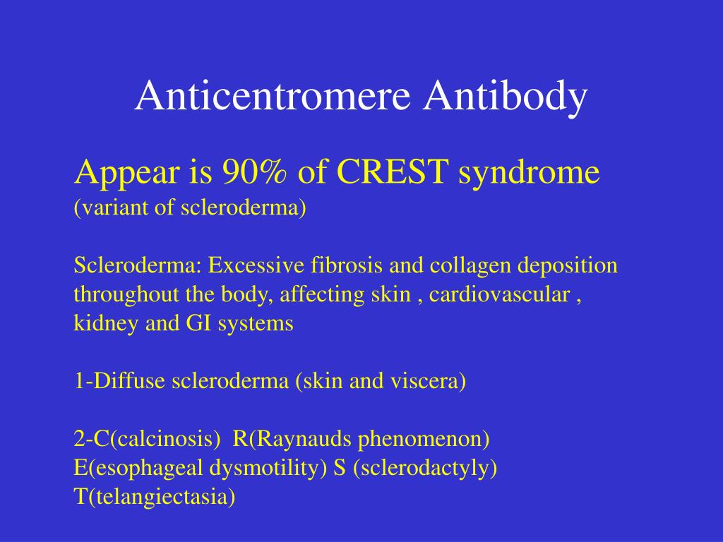 Anticentromere Antibody