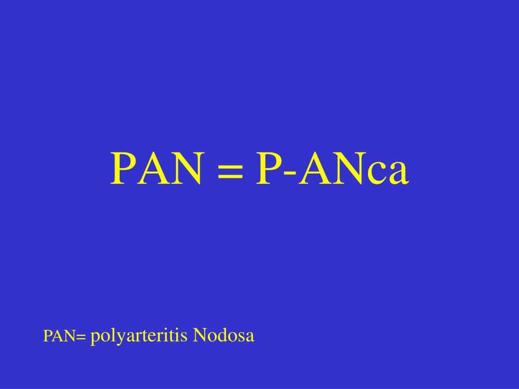 PAN = P-ANca