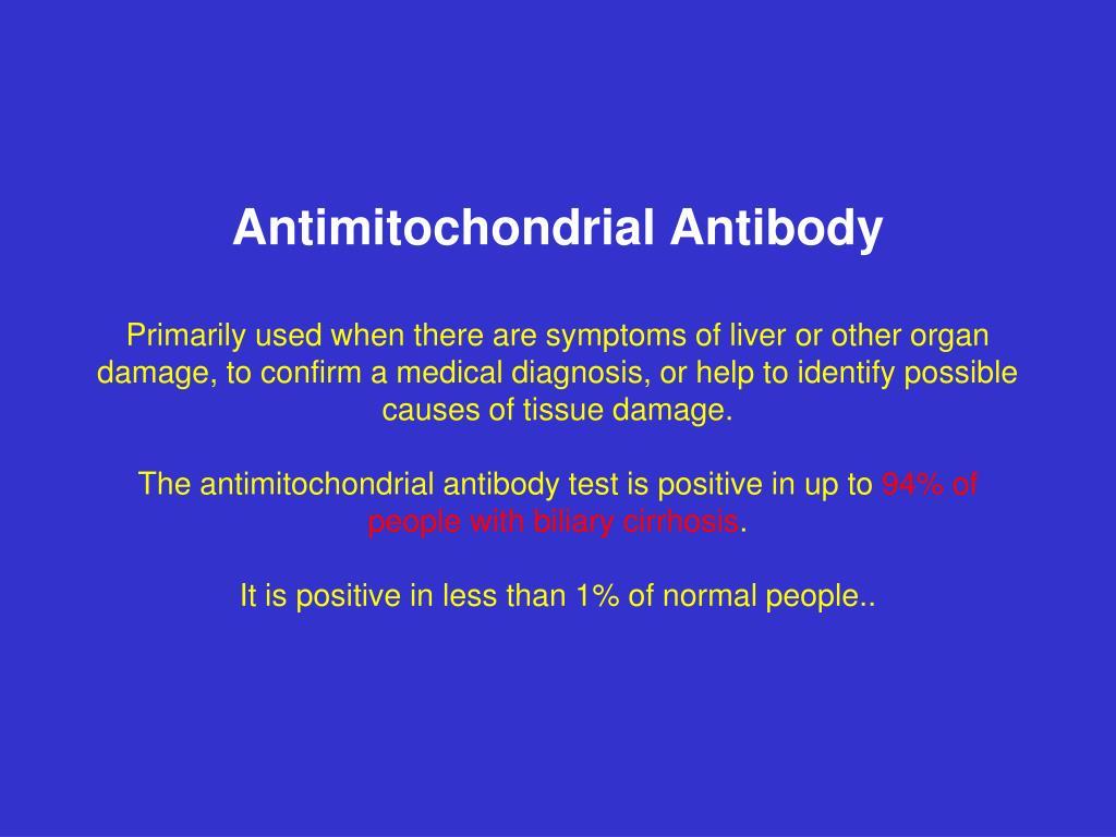 Antimitochondrial Antibody