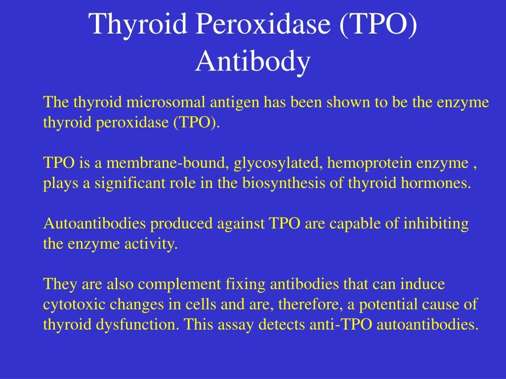 Thyroid Peroxidase (TPO) Antibody