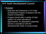 4 h youth development council