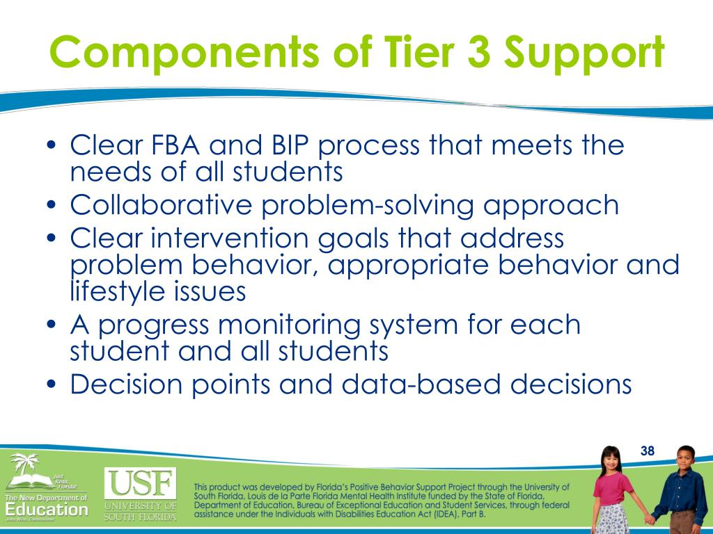 Components of Tier 3 Support