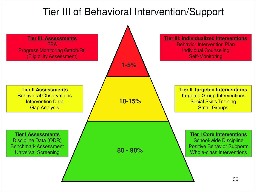 Tier III of Behavioral Intervention/Support