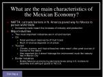what are the main characteristics of the mexican economy