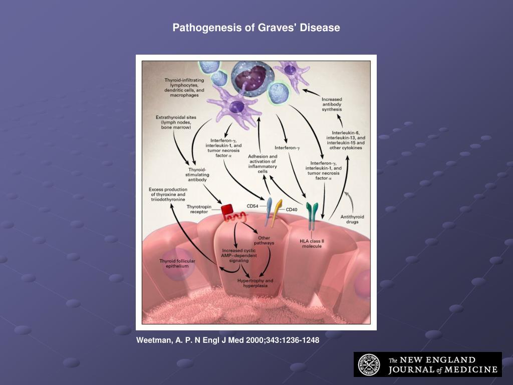 Pathogenesis of Graves' Disease