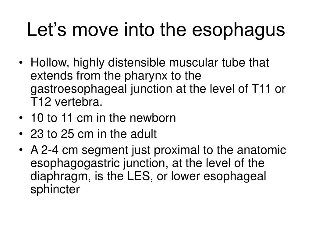 Let's move into the esophagus