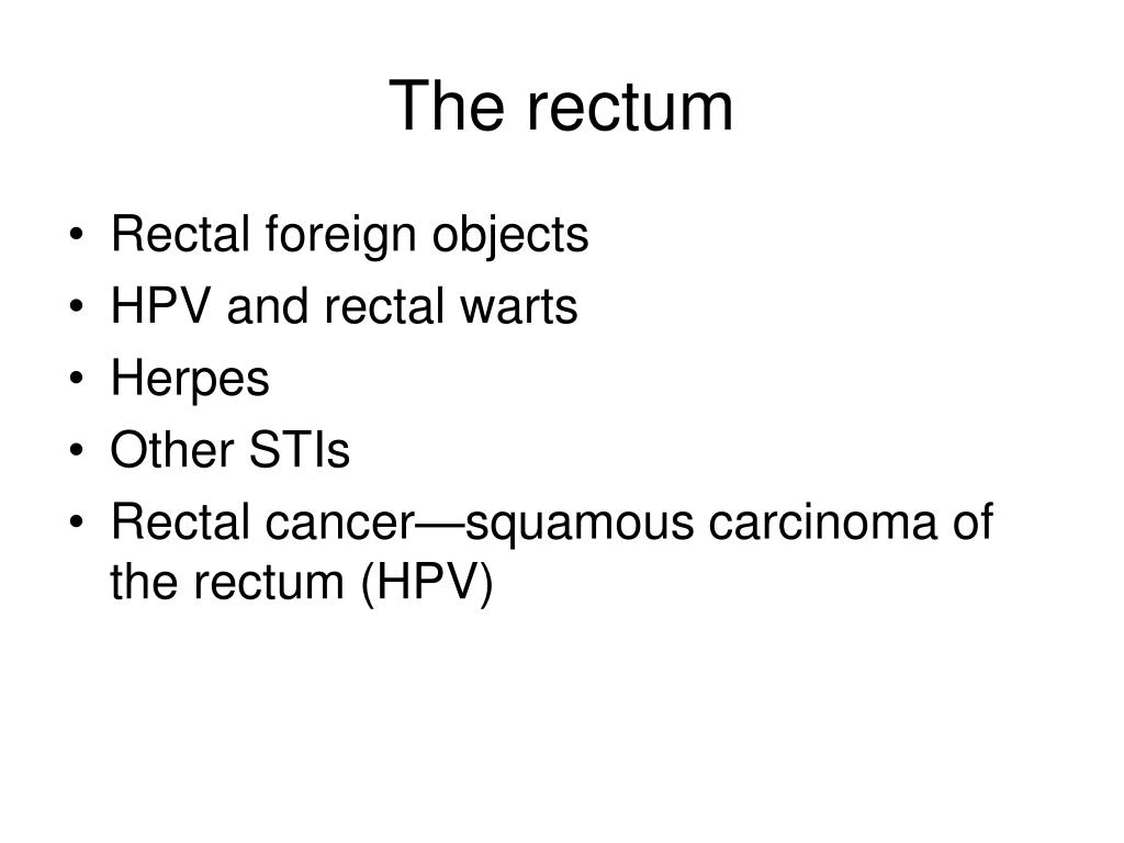 The rectum