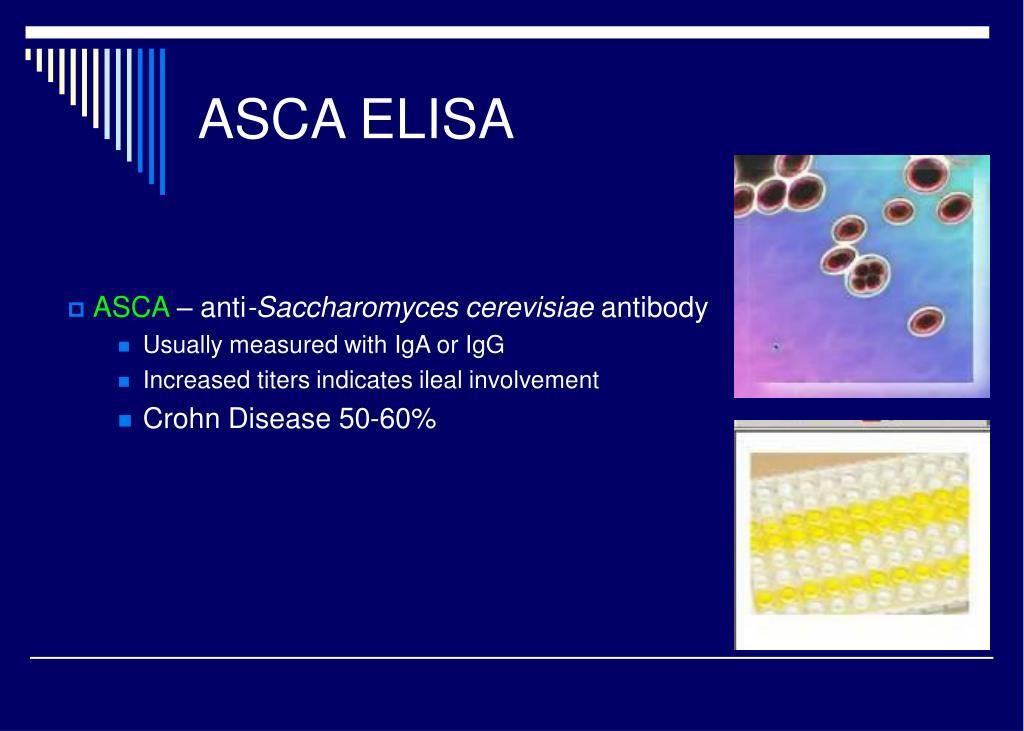 ASCA ELISA