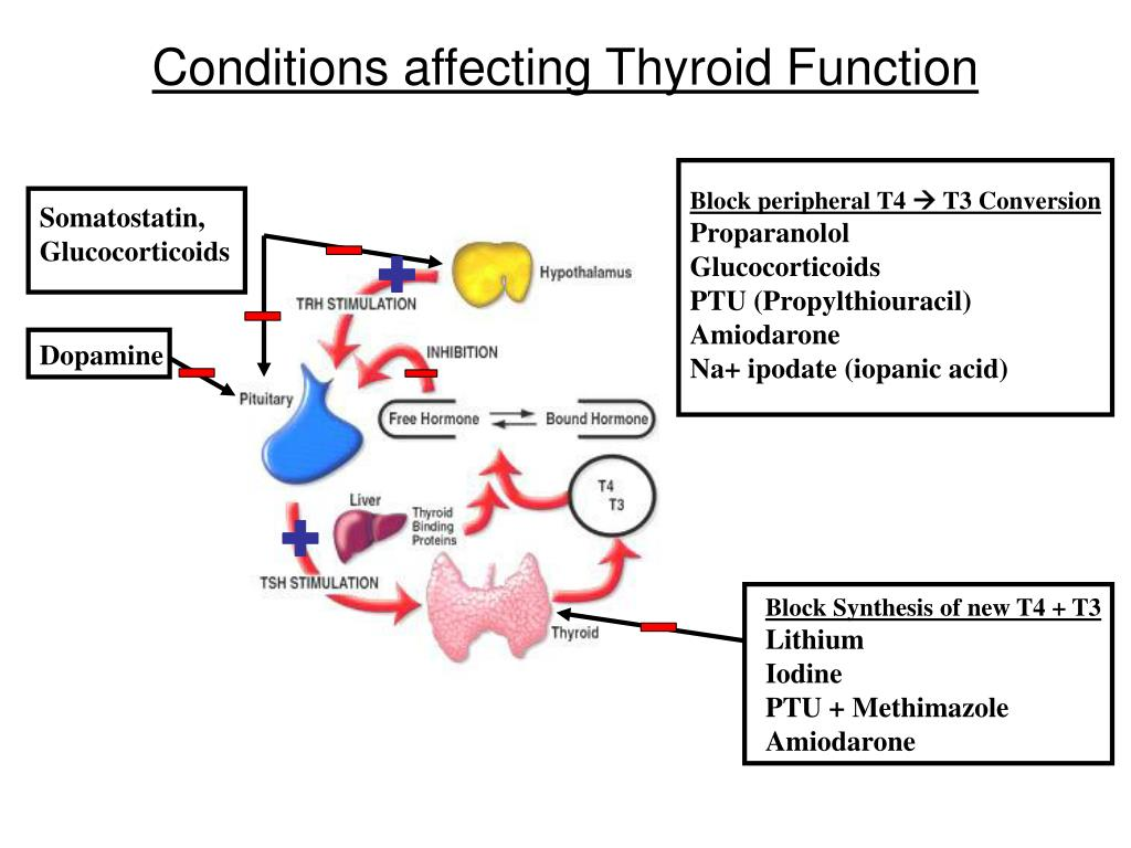 Conditions affecting Thyroid Function