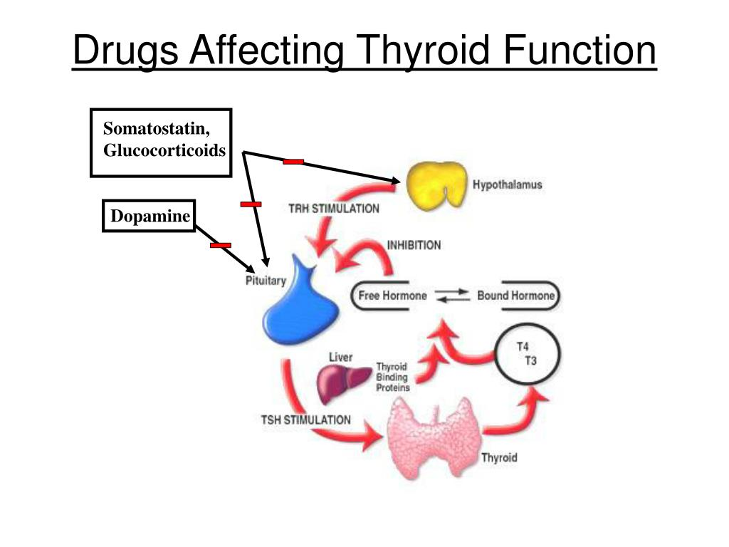 Drugs Affecting Thyroid Function