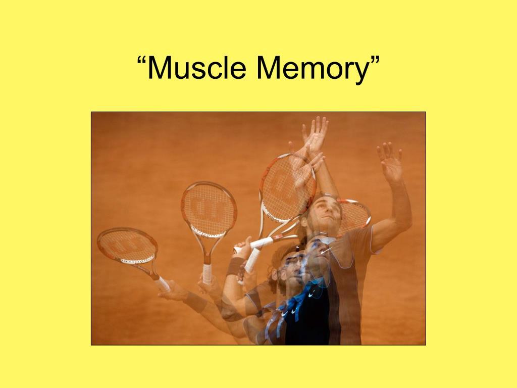 """Muscle Memory"""