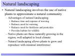 natural landscaping