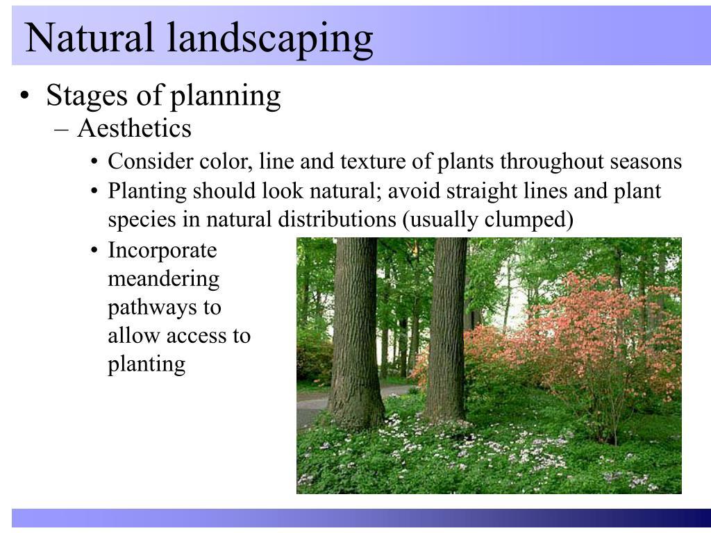 Natural landscaping