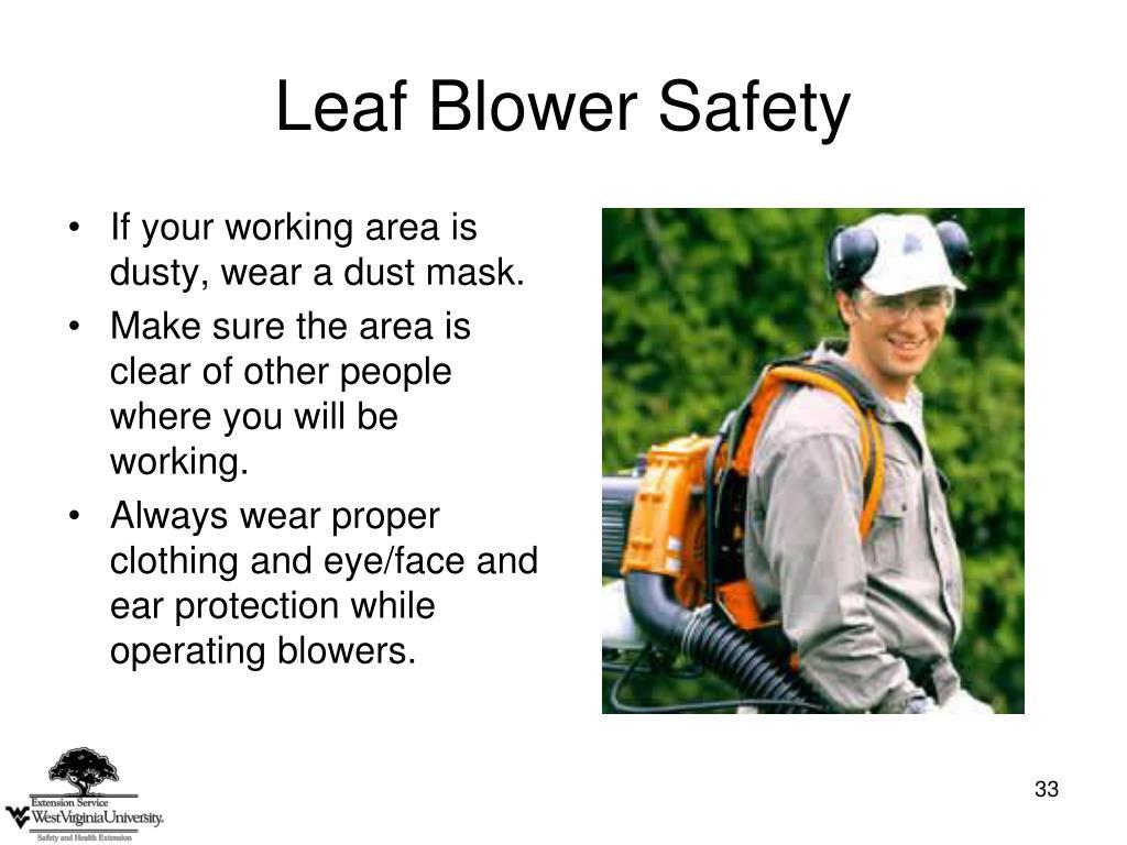 Leaf Blower Safety