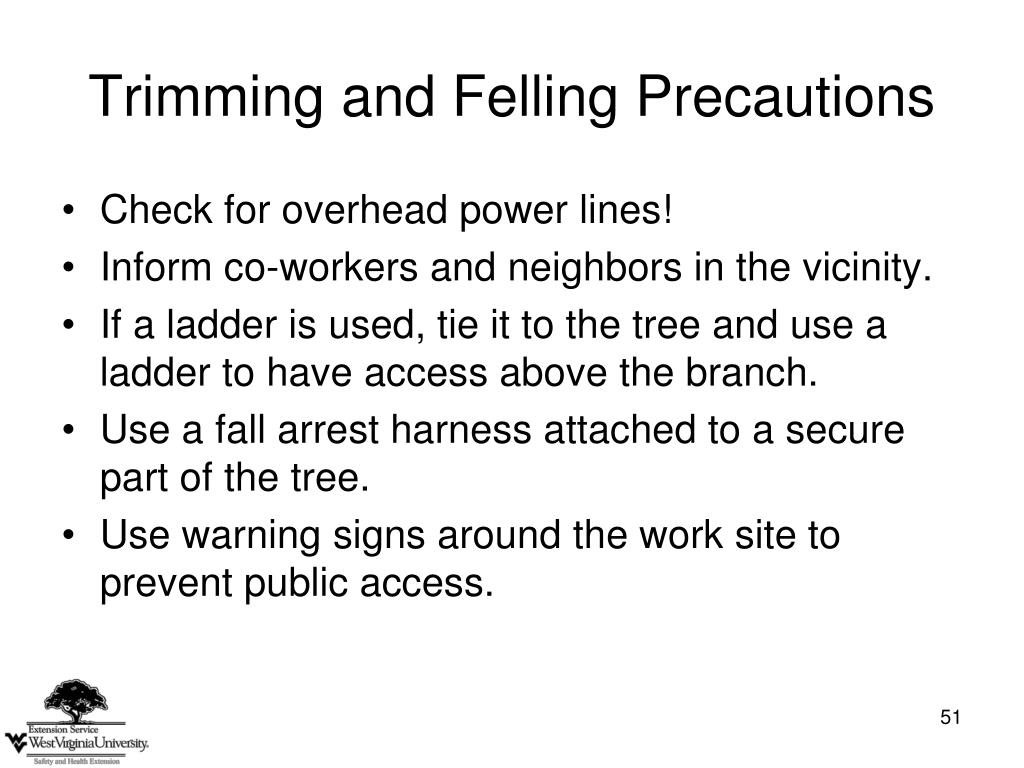 Trimming and Felling Precautions