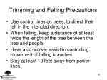trimming and felling precautions52