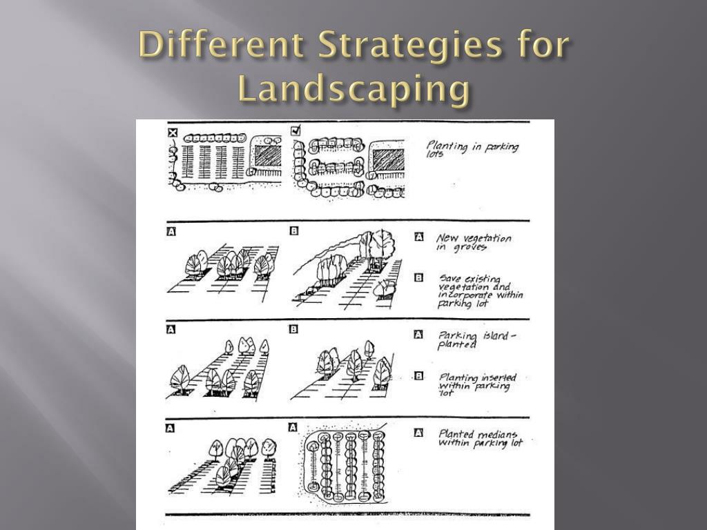 Different Strategies for Landscaping