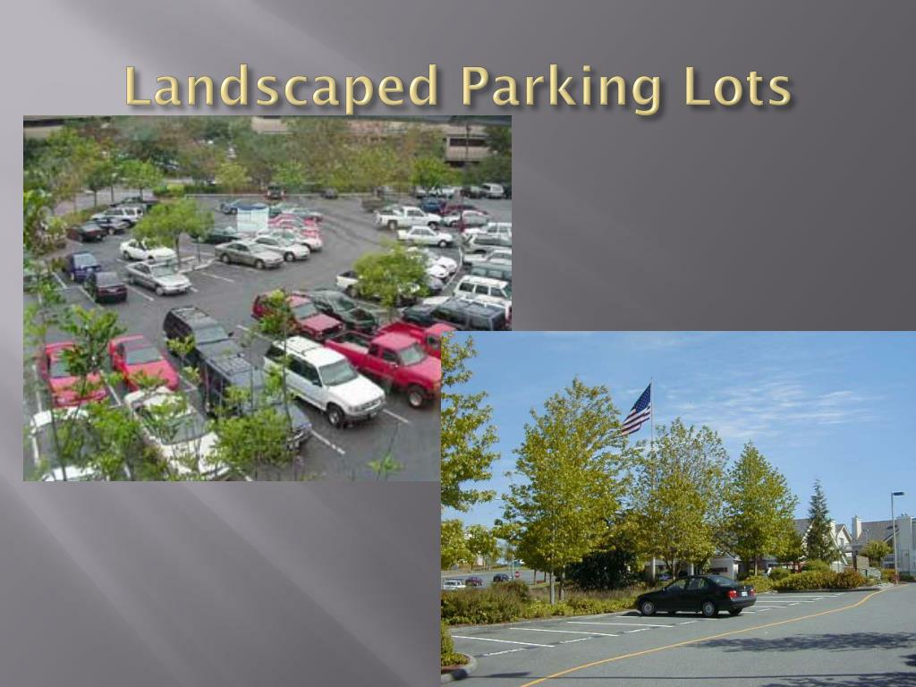 Landscaped Parking Lots