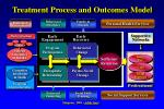 treatment process and outcomes model