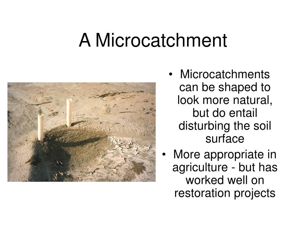 A Microcatchment