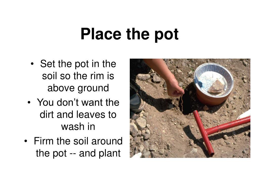 Place the pot