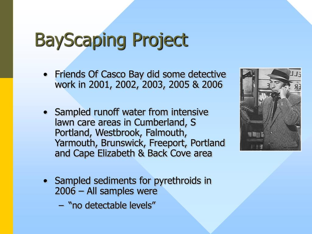 BayScaping Project