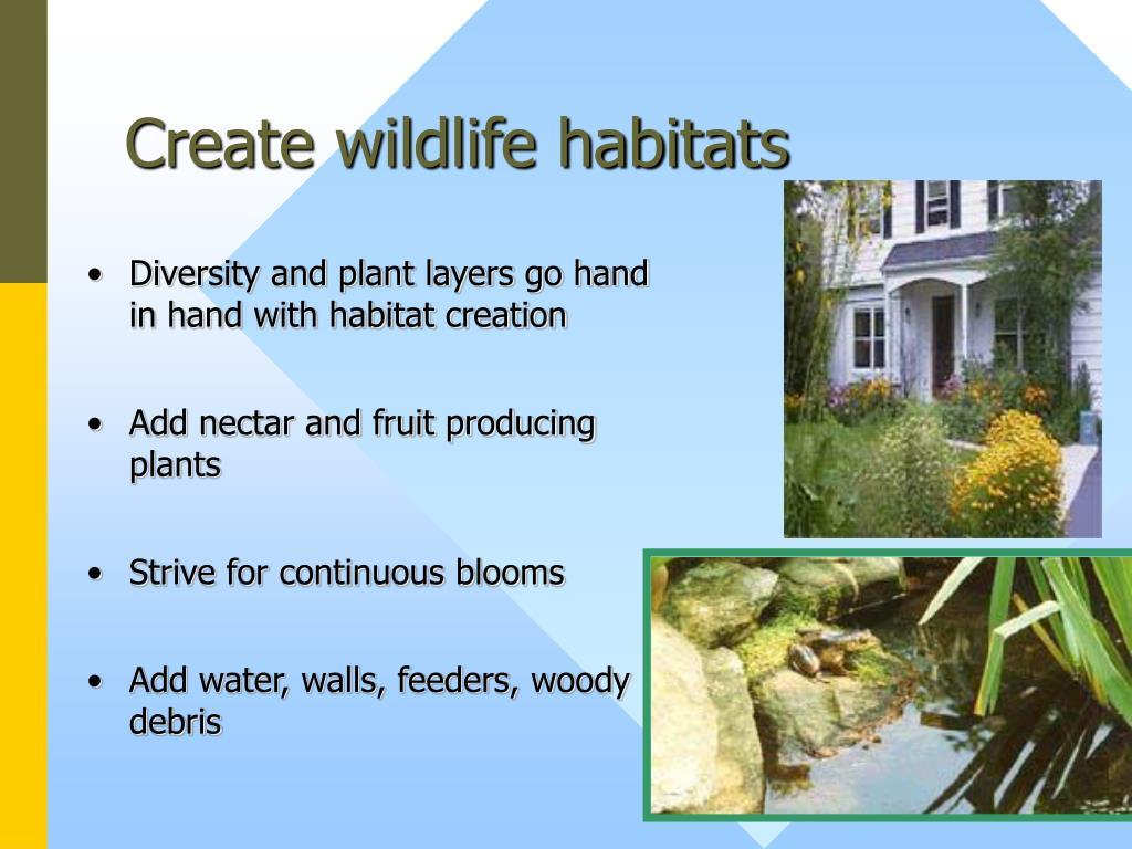 Create wildlife habitats