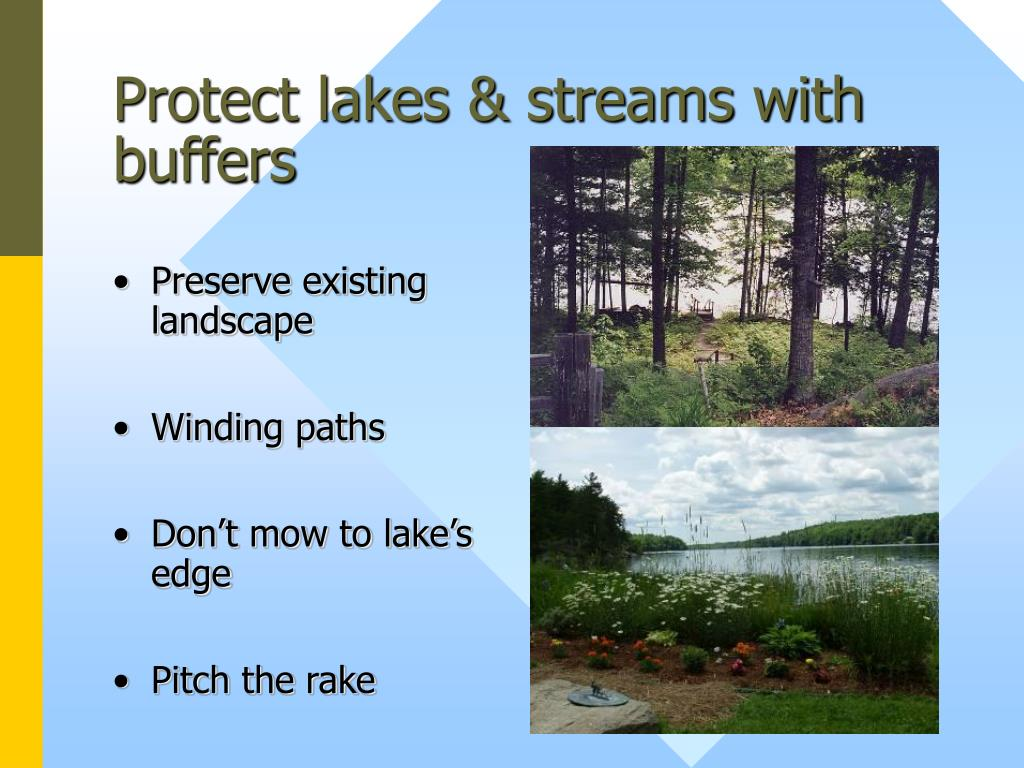 Protect lakes & streams with buffers