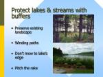 protect lakes streams with buffers