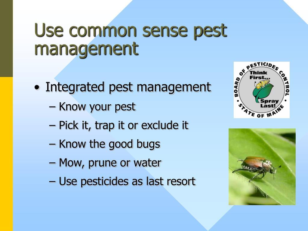 Use common sense pest management