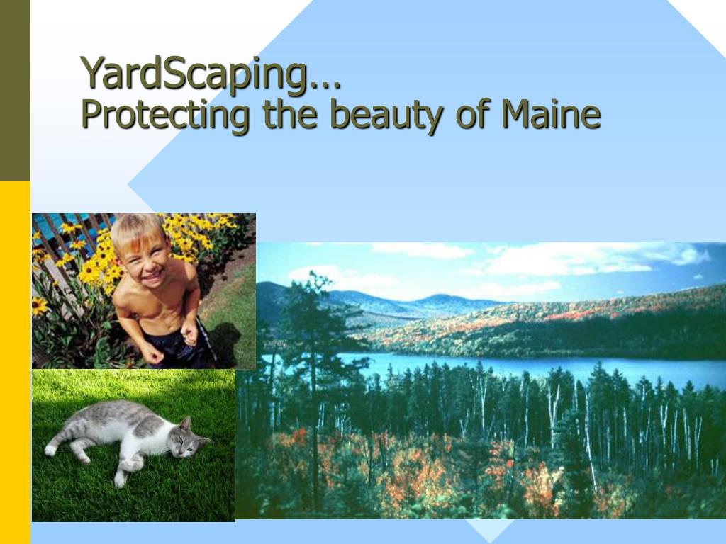 YardScaping…