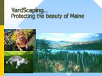 yardscaping protecting the beauty of maine