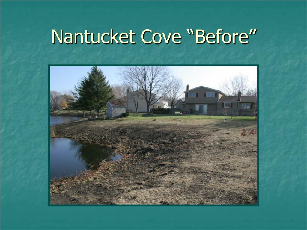 "Nantucket Cove ""Before"""