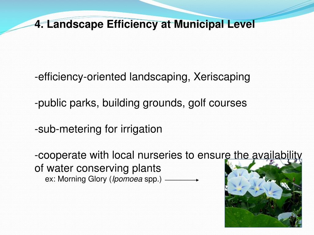 4. Landscape Efficiency at Municipal Level