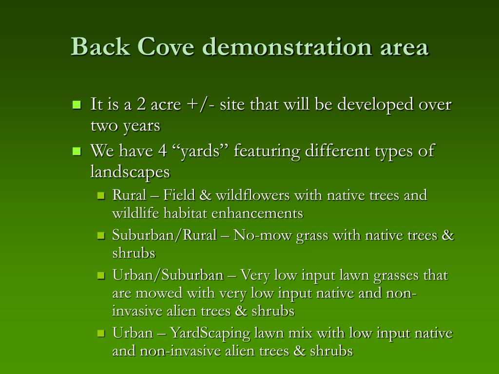 Back Cove demonstration area