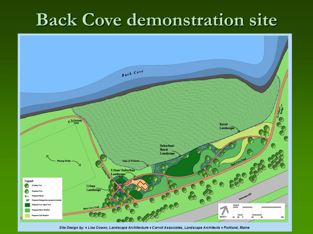 Back Cove demonstration site