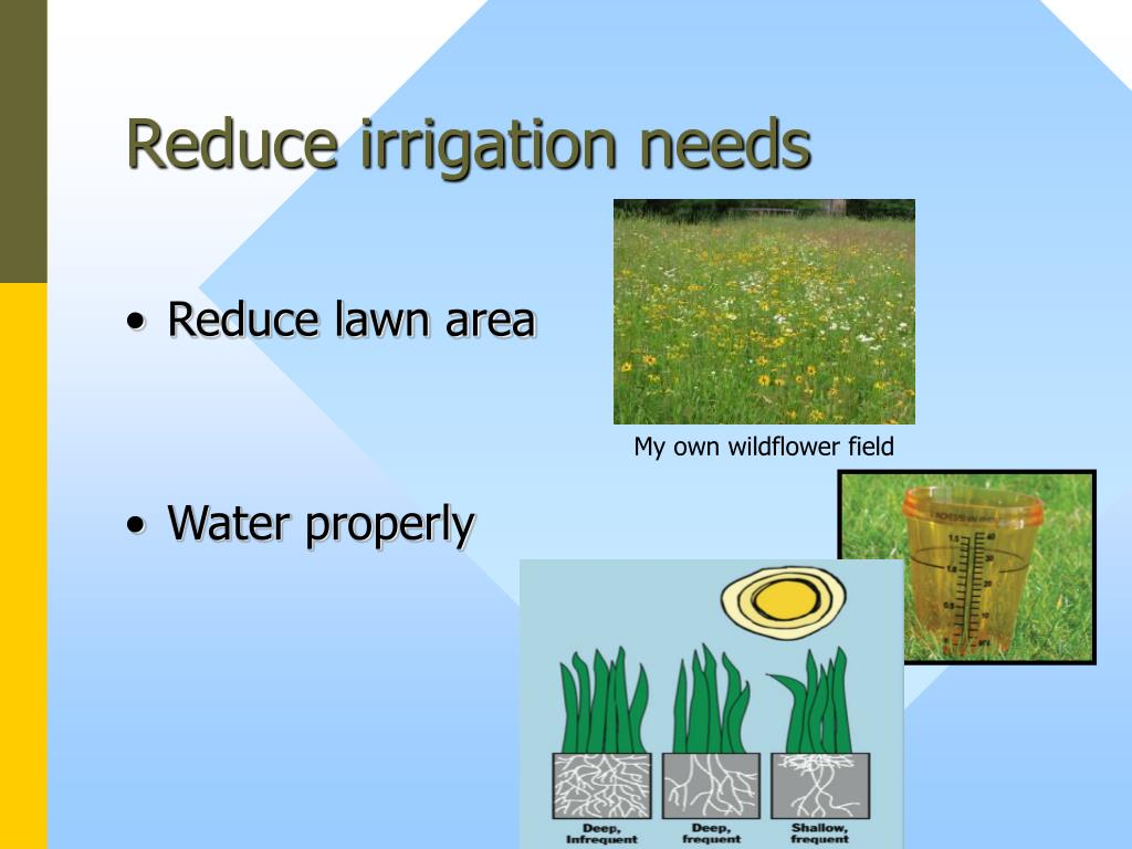 Reduce irrigation needs