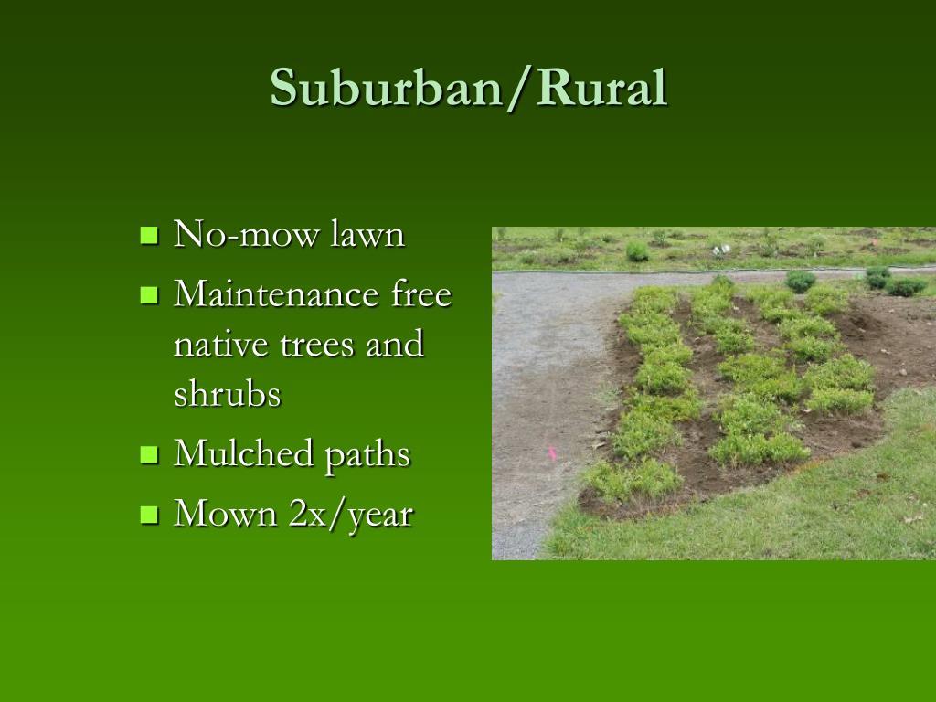 Suburban/Rural
