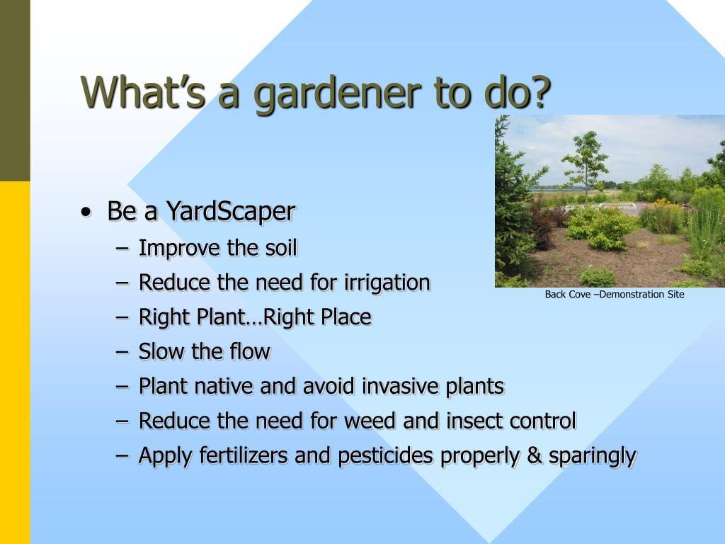 What's a gardener to do?