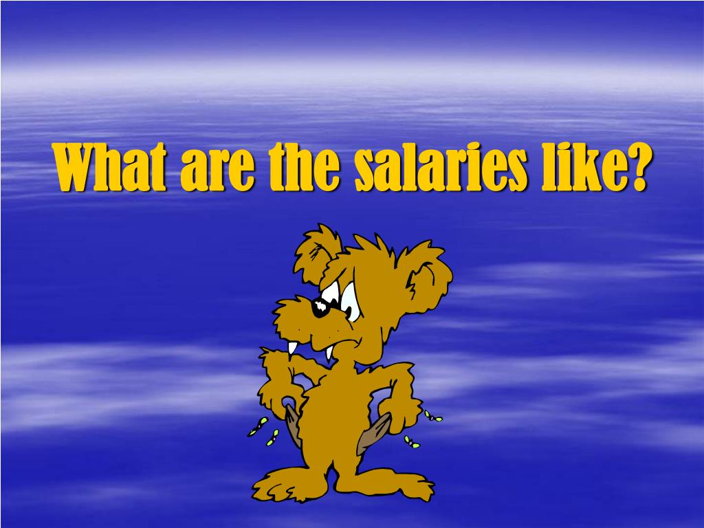 What are the salaries like?