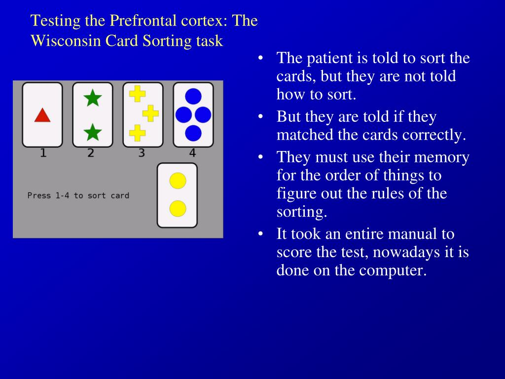 Testing the Prefrontal cortex: The Wisconsin Card Sorting task