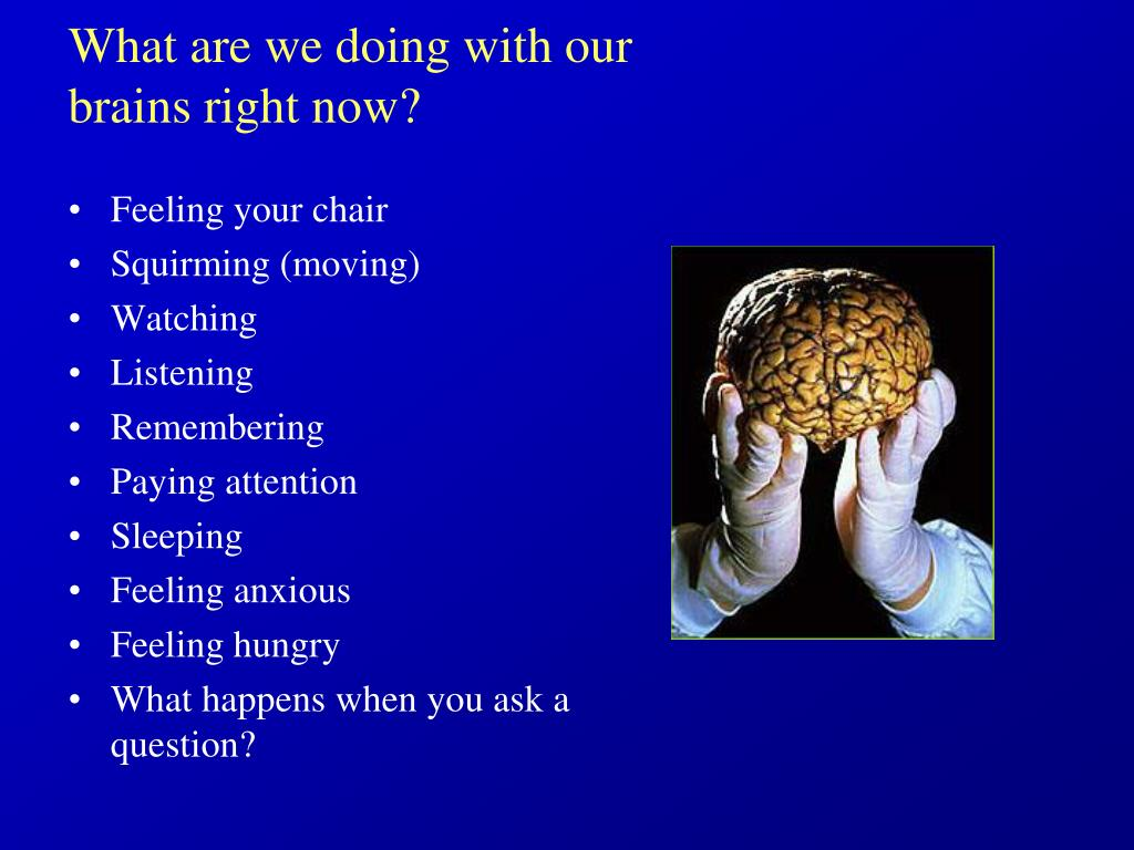 What are we doing with our brains right now?