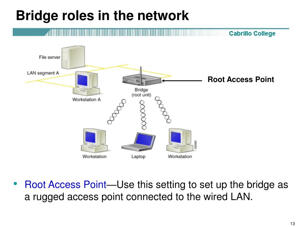 Bridge roles in the network
