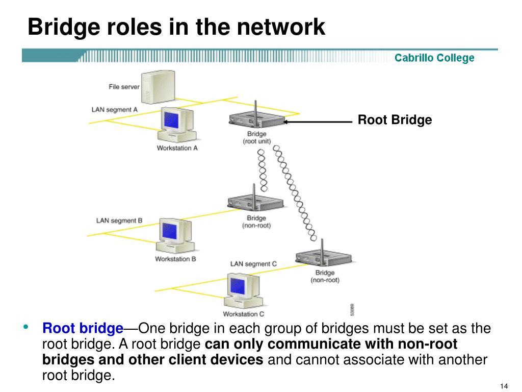 Bridge roles in the network