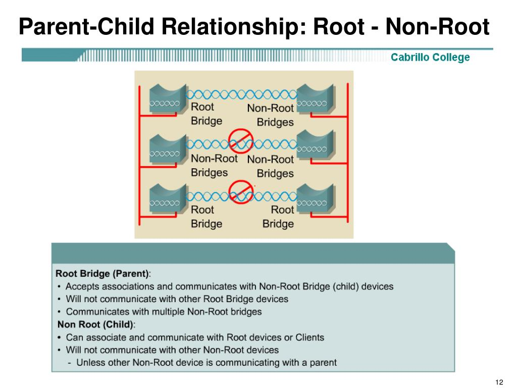 Parent-Child Relationship: Root - Non-Root
