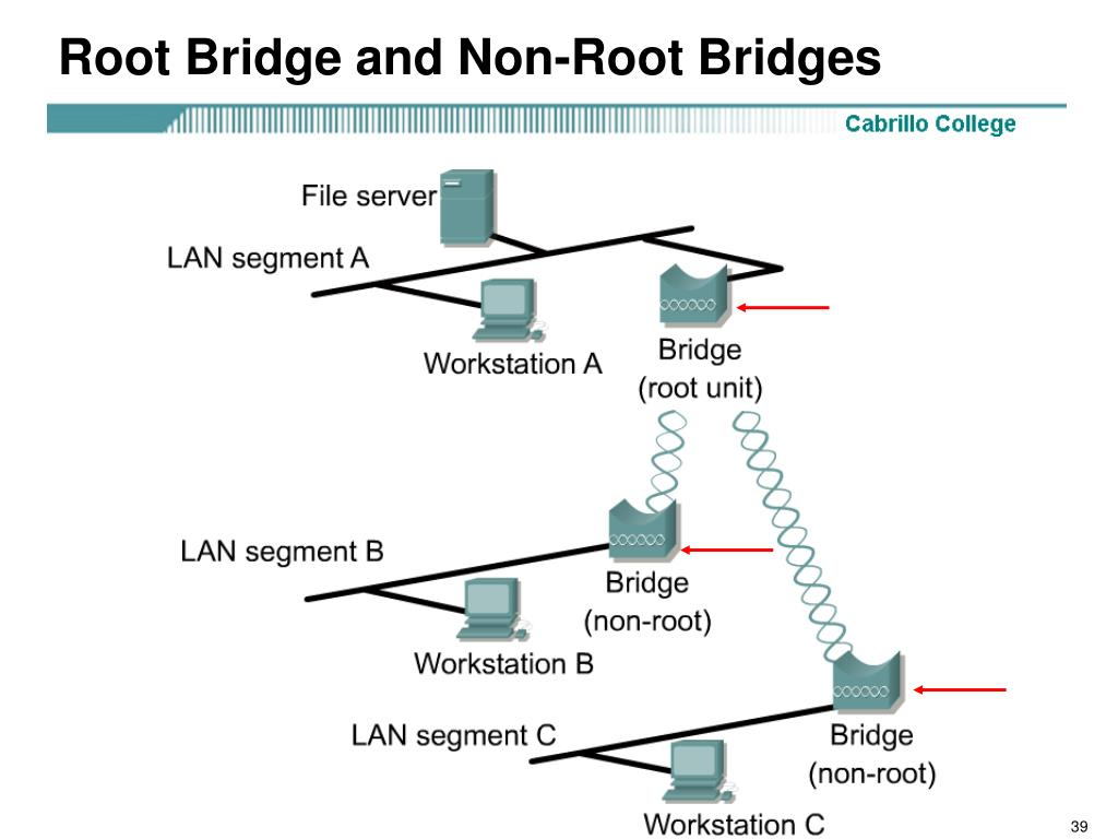 Root Bridge and Non-Root Bridges