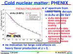 cold nuclear matter phenix