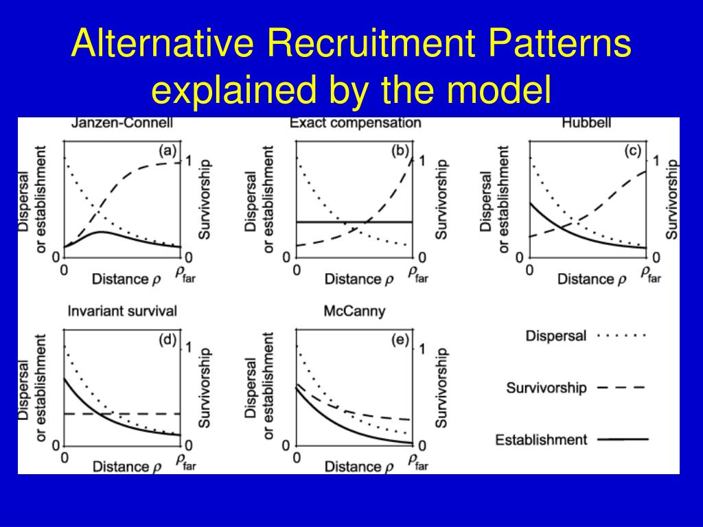 Alternative Recruitment Patterns explained by the model