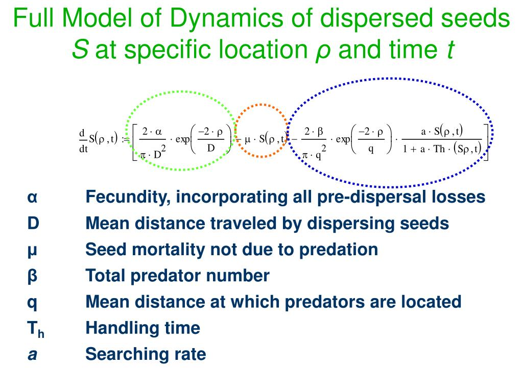 Full Model of Dynamics of dispersed seeds